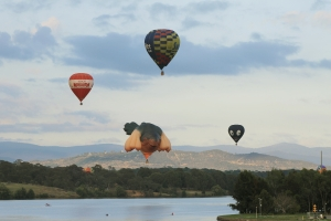Balloon Spectacular 2014 photo 4