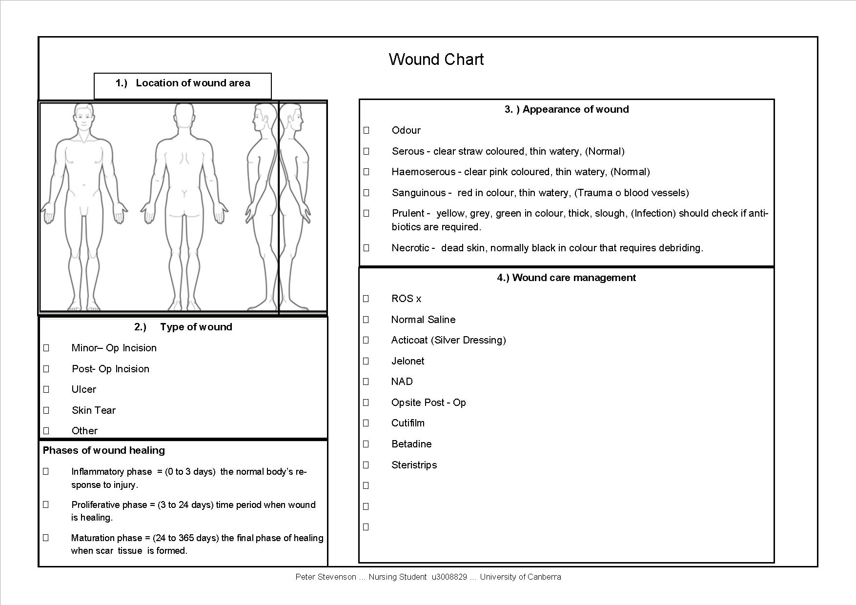 Wound care documentation template free printable nursing for Nursing templates for documentation